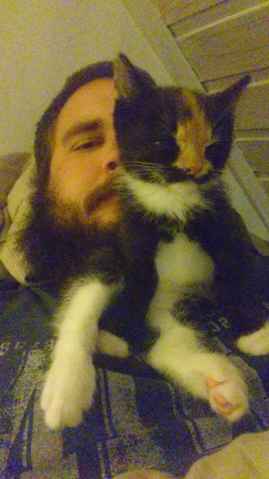 Frigg fell asleep while she was sitting and cleaning her self, on my beard.